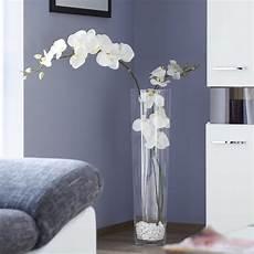 vase mit orchidee wohnen