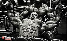 bodybuilding 2015 wallpapers wallpaper cave bodybuilding 2015 wallpapers wallpaper cave