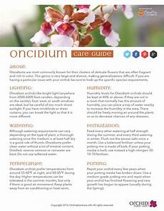 31 best helpful guides graphics images pinterest orchids lilies and orchid