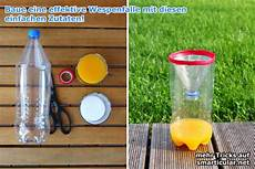 Wespenfalle Selber Bauen - hilfe gegen wespen im garten wespenfalle selbst gemacht