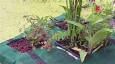 Schritt Fuer Schritt Gartenteich Selber schwimmende pflanzinsel f 252 r den gartenteich selber bauen