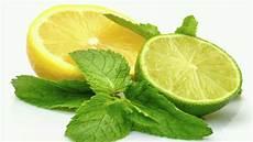 Pilih Mana Jeruk Nipis Atau Lemon Untuk Diet Selera Id
