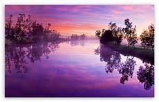 purple nature 4k wallpaper purple river reflection 4k hd desktop wallpaper for wide