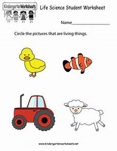 science worksheets nursery 12313 kindergarten science student worksheet printable learning worksheets kindergarten