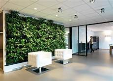 Office Green Walls green walls living walls office landscapes
