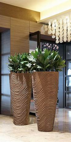 große pflanzen fürs wohnzimmer raumbegr 252 nung innenraumbegr 252 nung baumhaus pflanzenpflege b 252 ropflanze hydrokultur interior