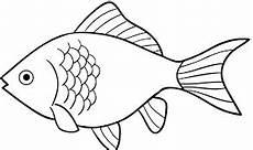 Image Result For Gambar Ikan Hitam Putih Sketsa Buku