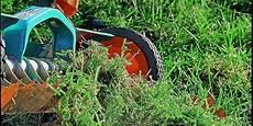 Rasen Vertikutieren Wann Ist Die Richtige Zeit