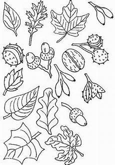 Ausmalbilder Herbst Grundschule Herbst Ausmalbilder Zum Ausdrucken 06 Ausmalen