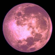 pink moon wallpaper keeping your in all the s pink moon