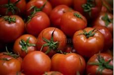 Tomate Stockfoto Bild Plano Einige Tomate Farben