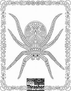 Window Color Malvorlagen Spinne Spider Coloring Page Spider Coloring Page Coloring