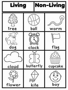 living and nonliving worksheets kindergarten living and nonliving by latoya reed teachers pay teachers