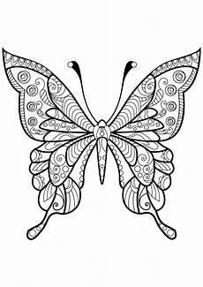 insekten 59975 schmetterlinge und insekten malbuch fur