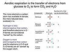 ppt redox reactions in metabolism standard reduction potentials coenzymes in metabolism and