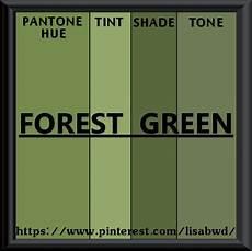 pantone seasonal color swatch forest green pantone color