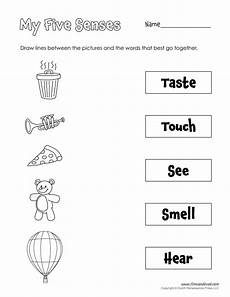 the five senses worksheets 12571 printable 5 senses worksheet tim s printables