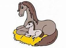 Ausmalbilder Pferde Hannoveraner Malvorlagen Pferde Fohlen