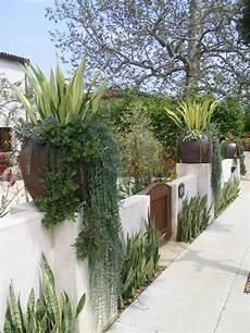 Succulent Front Yard Ideas Houzz