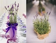 Duftender Lavendel Im Topf Auf Dem Tisch Wedding