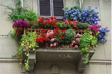 fiori in terrazzo pillole di gusto consigli di stile anche a casa terrazze