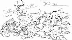 Ausmalbilder Weihnachten Reh Reh Vorgaenger Ausmalbild Malvorlage Tiere