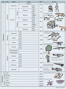 earth science geologic time worksheet 13384 sci 245 geologic time worksheet