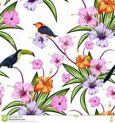 Malvorlage Vogel Mit Blume Nahtloses Muster Mit Exotischer Tropischer Blume Und