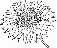 ausmalbilder herbst sonnenblumen tiffanylovesbooks
