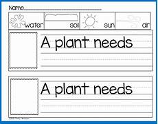 science plants worksheets for kindergarten 13582 plant print play pack freebie kindergarten writing kindergarten science teaching