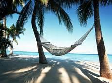 l amaca sognando l amaca i caraibi a portata di mano