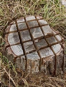 Die Besten 25 Baumstumpf Entfernen Ideen Auf