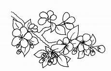 fleur de cerisier dessin 8 diy e ideas para el verano f de fifi