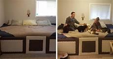amici di letto megavideo coppia con 5 gatti e 2 cani amano tutti dormire insieme