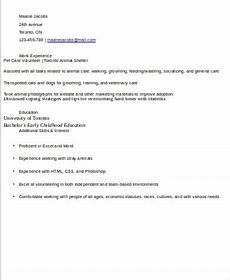 sle volunteer resume 10 exles in word pdf
