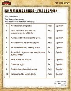 our feathered friends view 3rd grade science worksheet sod