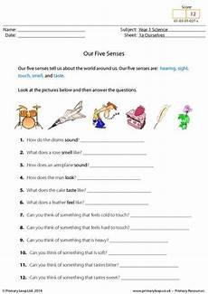five senses worksheets esl 12645 primaryleap co uk our five senses worksheet five senses worksheet grade worksheets