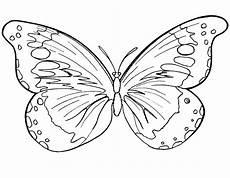malvorlagen gratis word бабочки