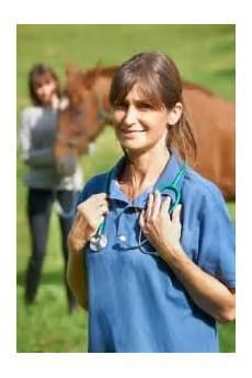 Op Versicherung Pferd - pferdeversicherung aktuelle news f 252 r pferdehalter