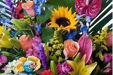 acquistare fiori di bach originali compleanni personaggi famosi compleanni vip