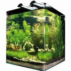 60 liter becken dennerle nanocube complete plus 60 liter mini aquarium