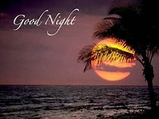 Good Night Dania Ji Sms Shayari Good Night Sms