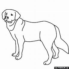 lab coloring pages at getdrawings free