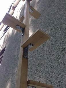 Cat Ladders Cats Cat Stairs Outdoor Cats