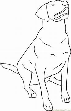 labrador retriever coloring page free coloring pages