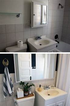 rental bathroom before after makeover with dark wall paint hanging plants and an antique rug