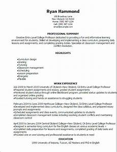 sle curriculum vitae university lecturer lecturer cv
