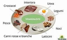 vitamina b in quali alimenti la vitamina b 12 pericoli della carenza gastrite