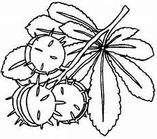 november malvorlagen xxi ausmalbild kastanienblatt kostenlose malvorlage