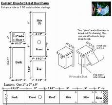 easy bluebird house plans armistead s bluebird house project